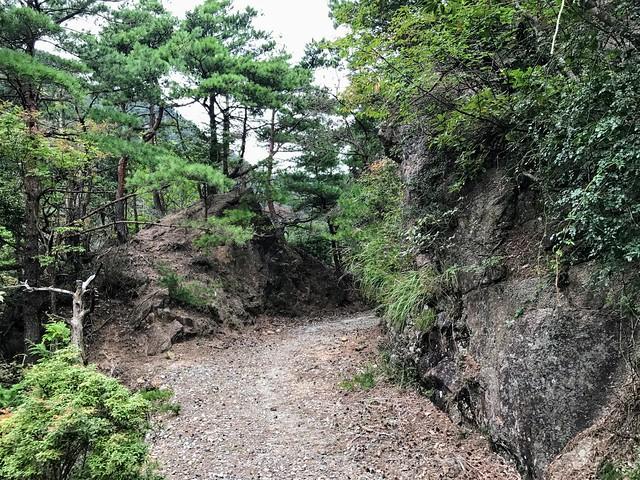 仙ヶ岳 林道 削岩