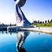 Water Kelpie