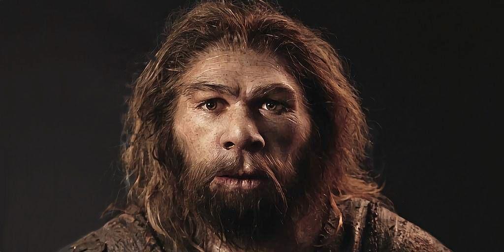 cerveau-néandertaliens