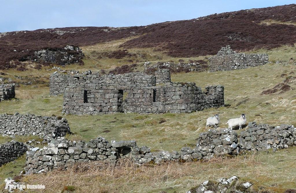 P1140245 - Crackaig, Isle of Mull