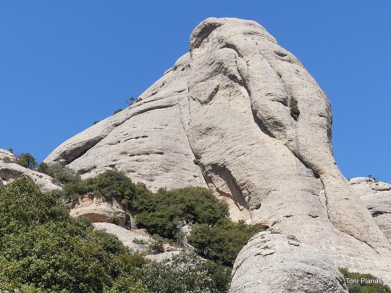 Montserrat. Roca de Sant Salvador (l'Elefant)