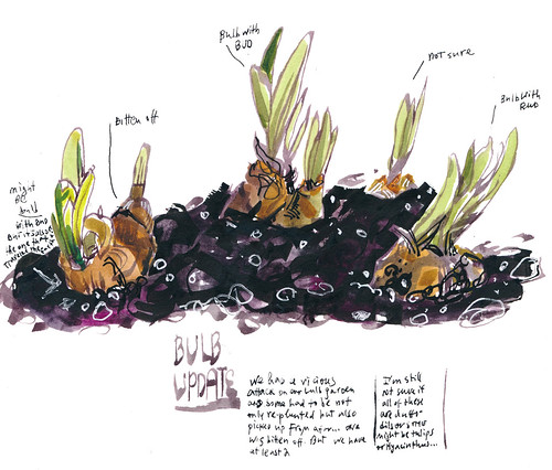 Sketchbook #112: The story of old bulbs18