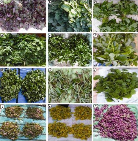 झारखंड की सब्जियाँ