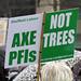 Sheffield Street Tree Demonstration, April 2018