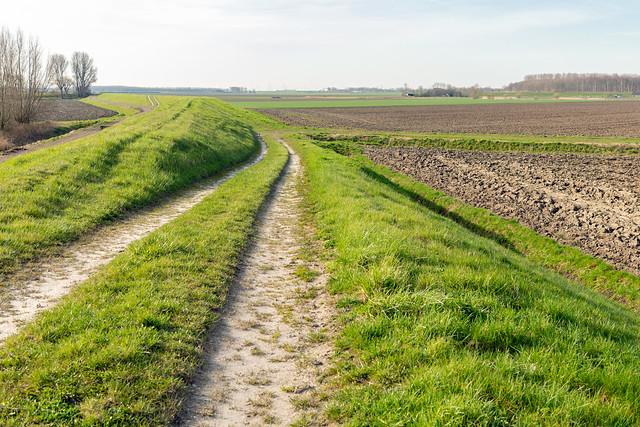 Cart track along a Dutch dike - Karrespoor langs een dijk