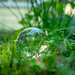 Crystal ball in the garden _IMG2030 by mariachistatic