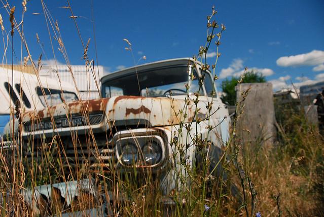 car junk yard (17)