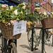 Bike flower show
