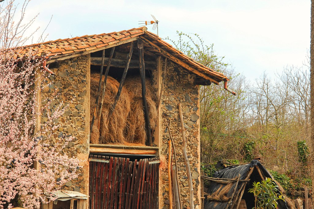 Farmhouse, Garrotxa Natural Park