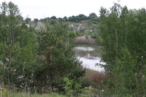 Teich im Steinbruch