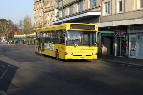 Yellow Buses 504 SN55DVH