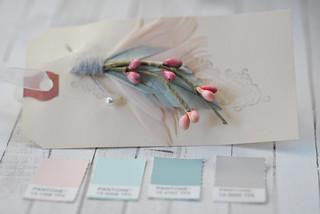 Torie Jayne Design colours