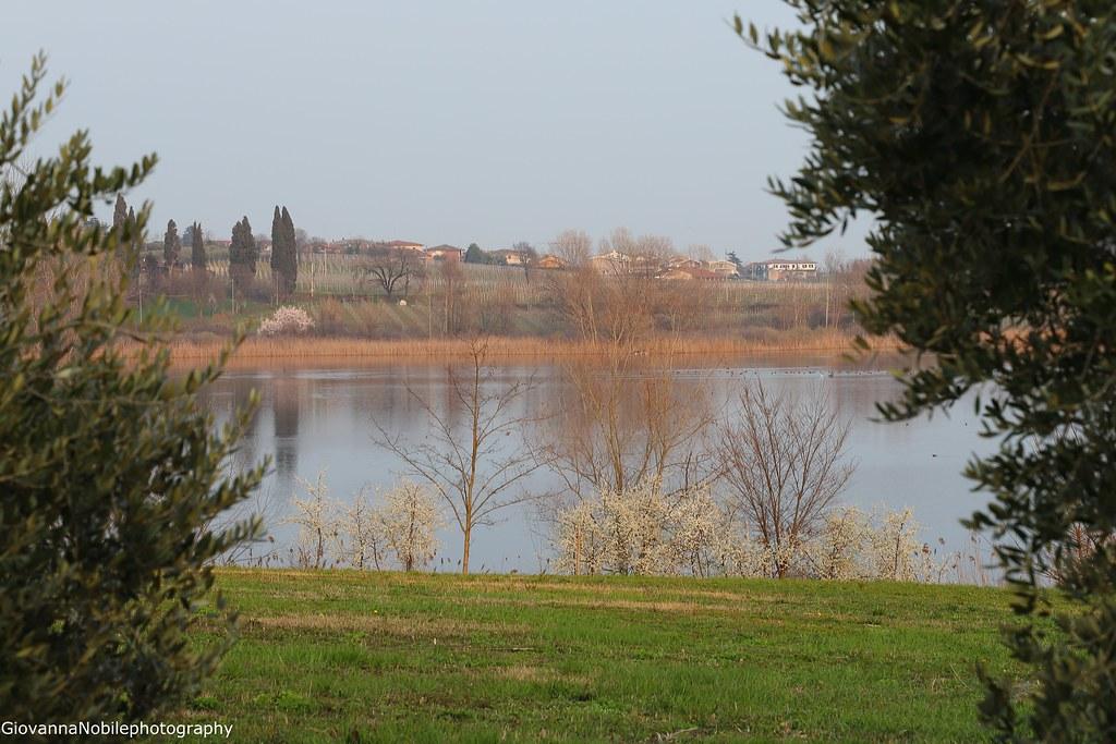 Girando per il lago....