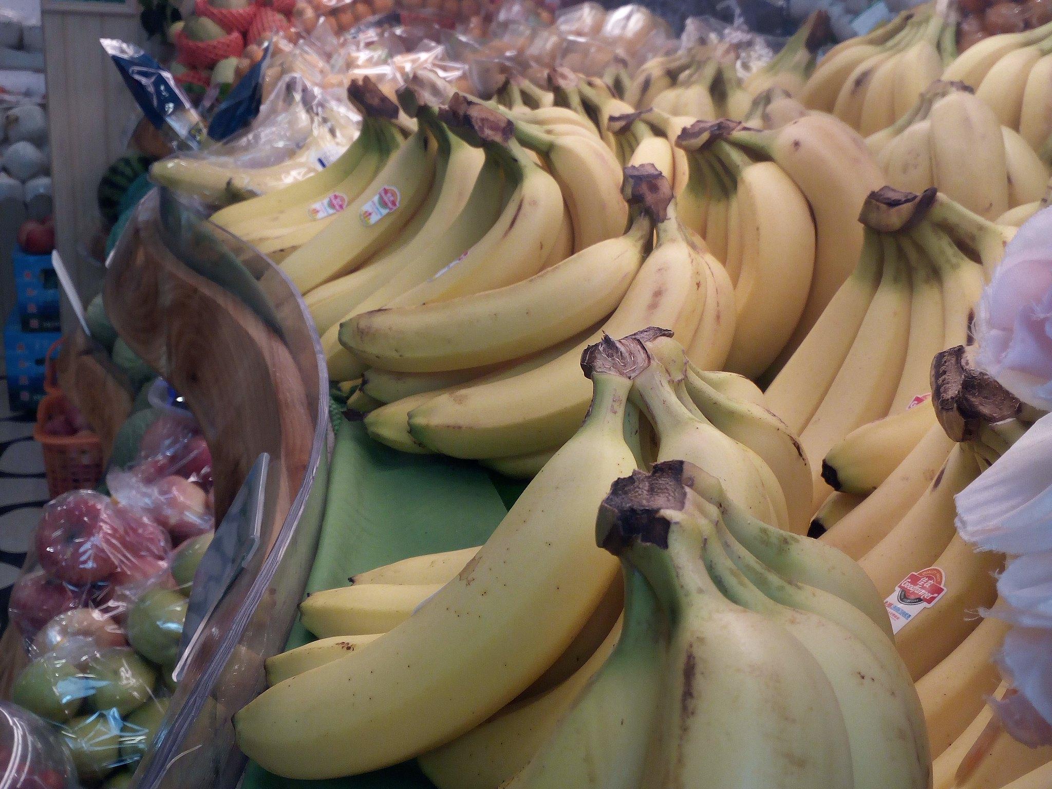 IMG_20180403_134246 EDIT (Going, bananas)