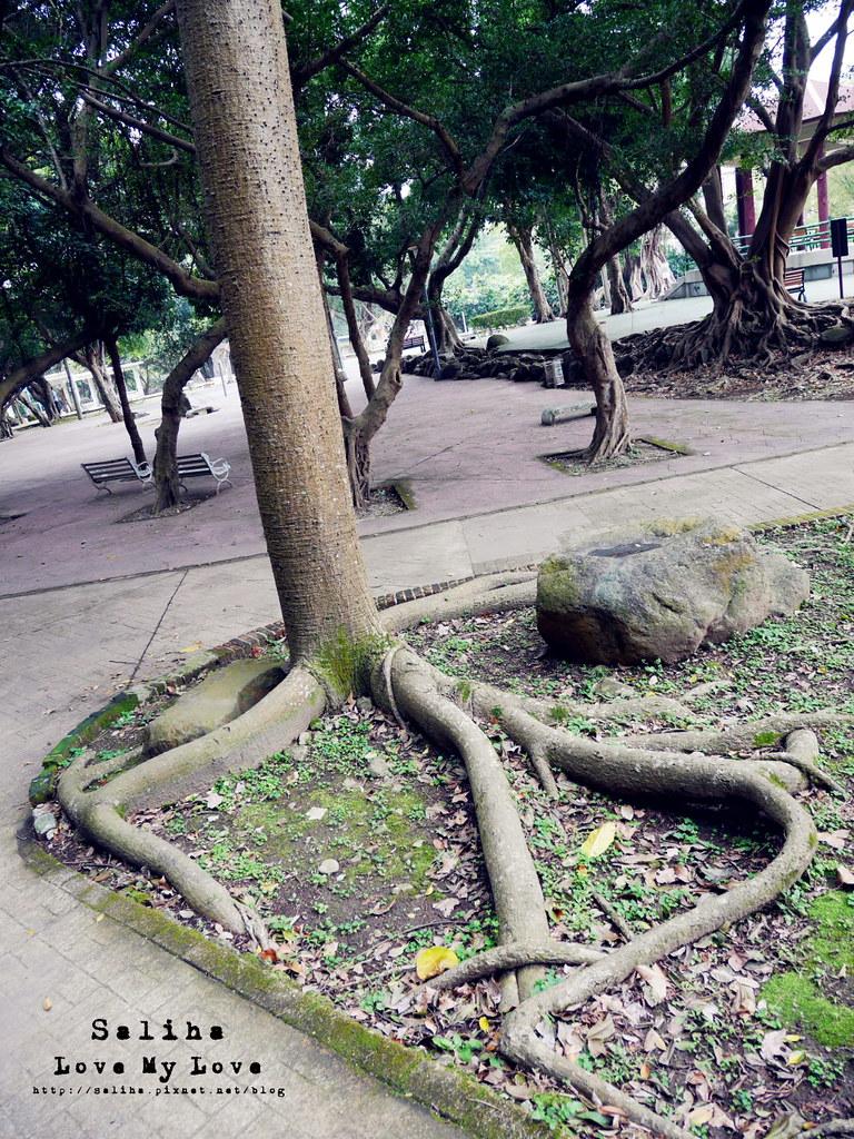 台北士林區天母一日遊行程推薦天母公園 (31)