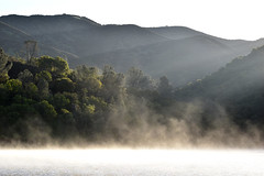 Morning Mist off the Lake