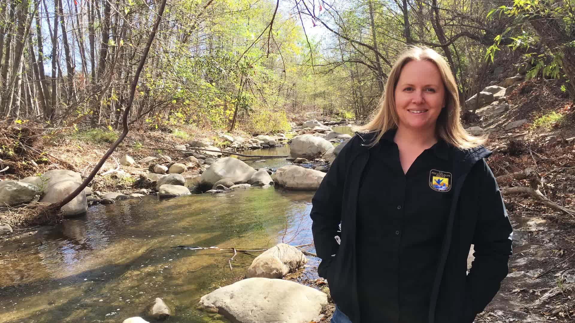 Interview with senior wildlife biologist Jenny Marek
