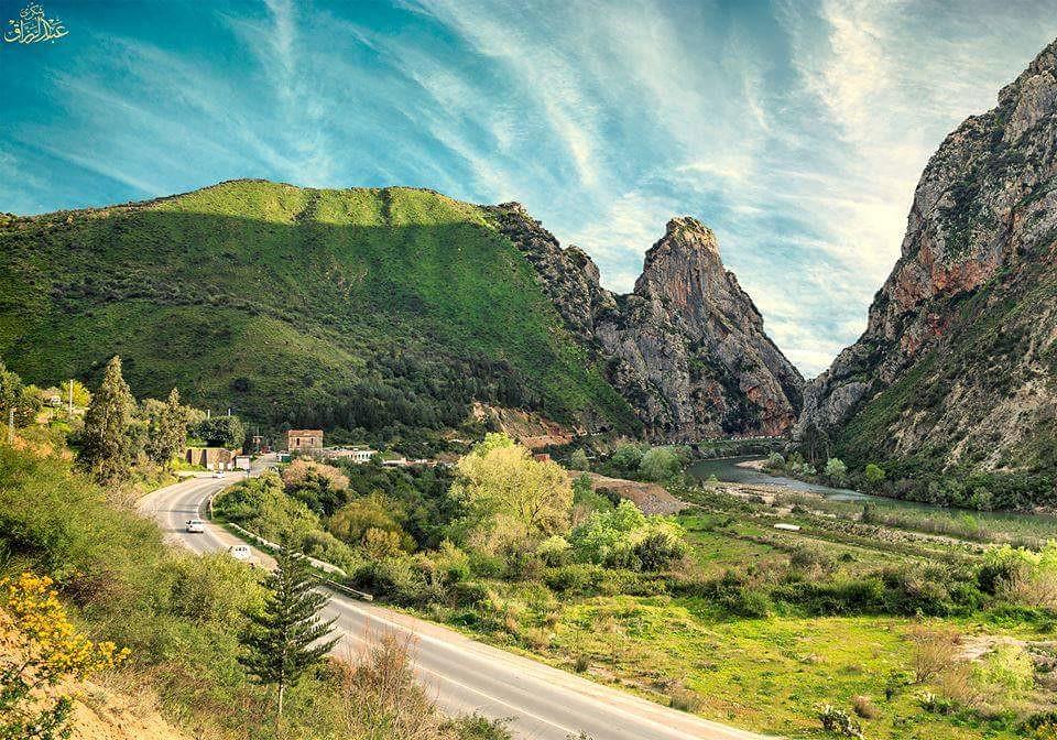 صور نادرة للطبيعة الجزائرية - صفحة 19 41262190371_6823ce81a6_b