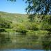 Ashenwell Dams