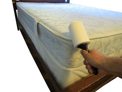 Extra Sticky Lint Roller for Bed Bug Detection and Removal