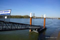 DSC04746 - Beuel / Rhein