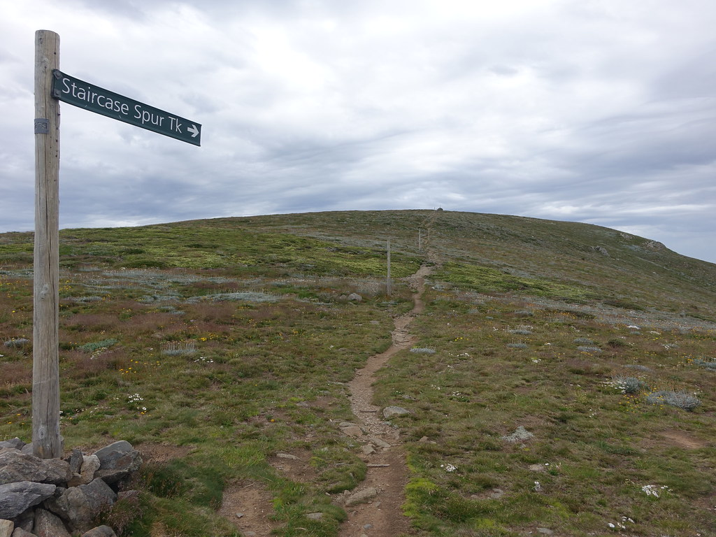 Which way? Mount Bogong