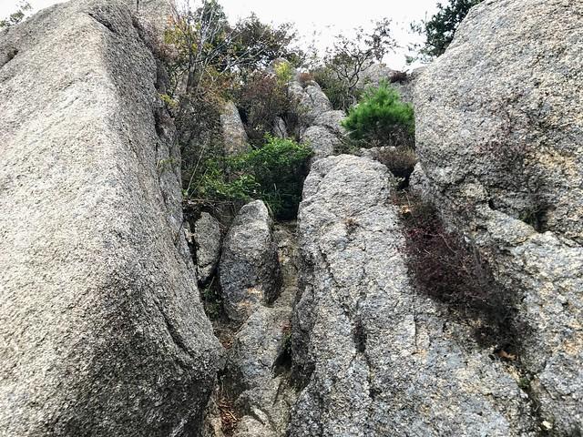 仙ヶ岳 南尾根 P2 岩場