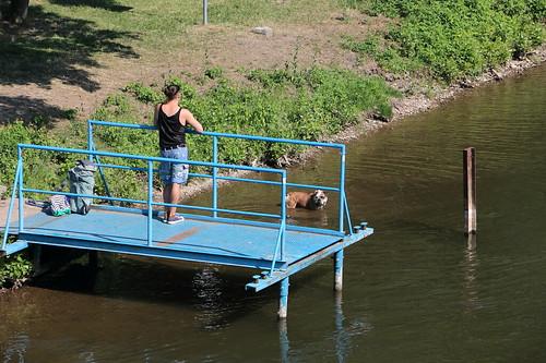 Badetag... da geht es den Tieren wie den Leuten...