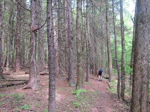 AT Berkshires hike