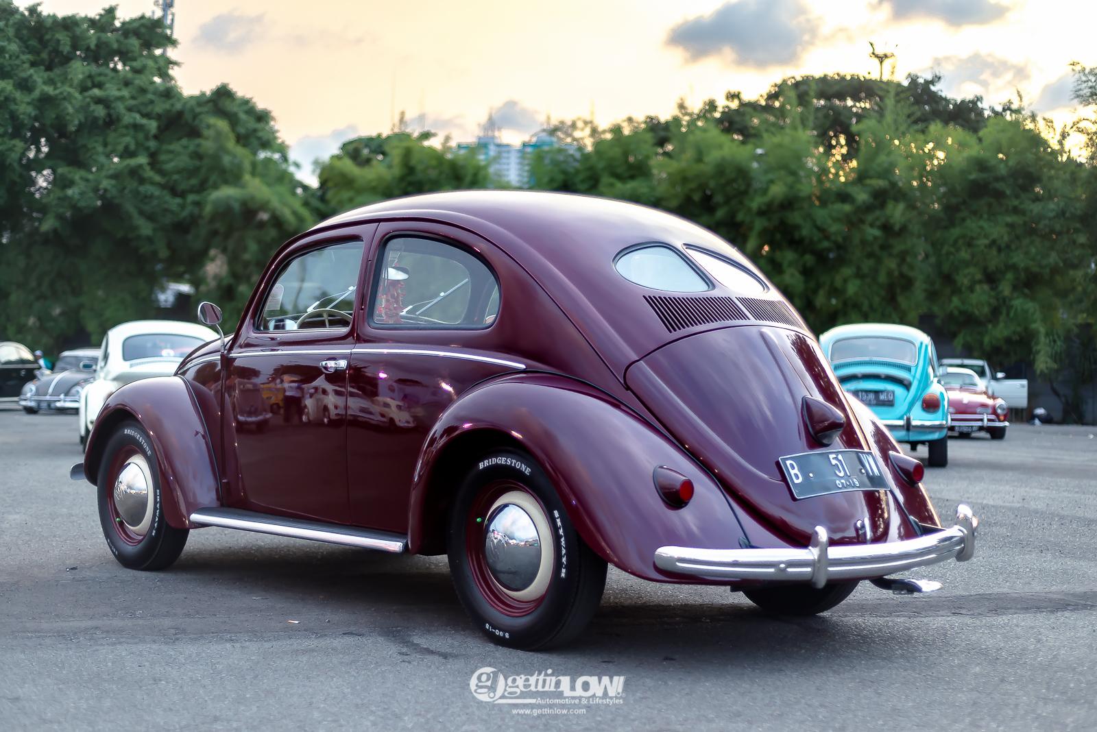 goesdi_beetle-split_-2