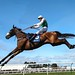 Vicente for Scottish Grand National hat trick?