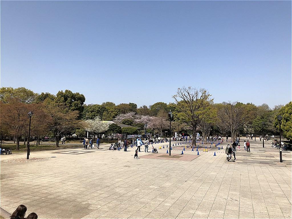 20180331_光ヶ丘 (5)