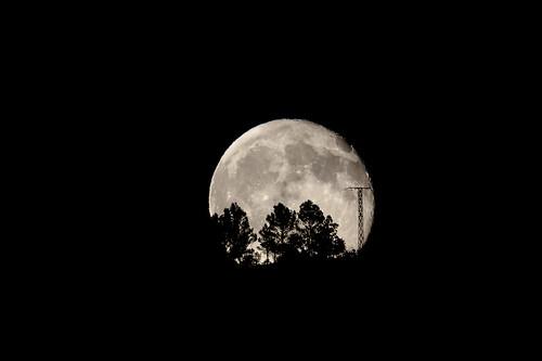 Luna saliente