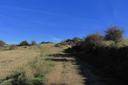 20121002 34 194 Jakobus Hügel Weg steil Büsche Bäume