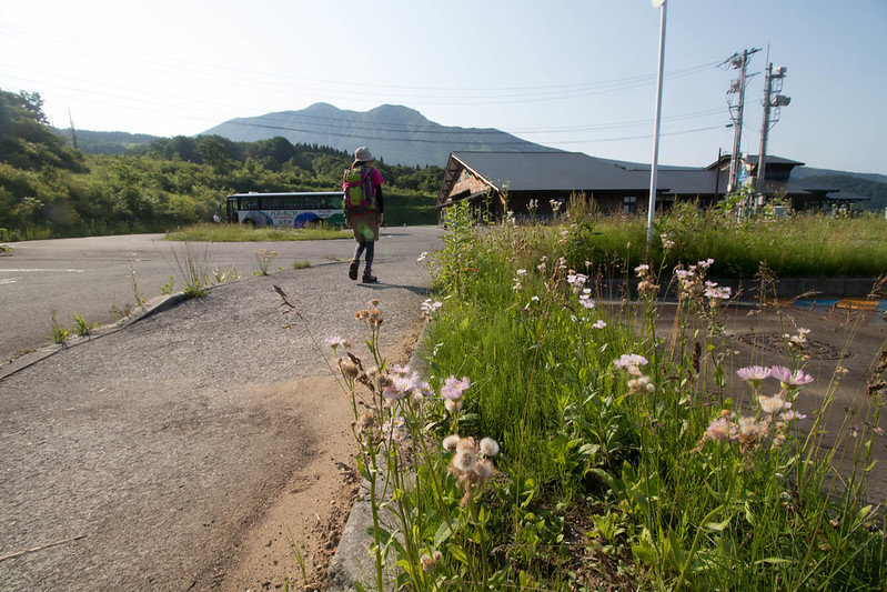 20170708-秋田駒ヶ岳_0049.jpg