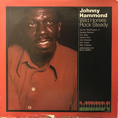 JOHNNY HAMMOND:WILD HORSES ROCK STEADY(JACKET A)