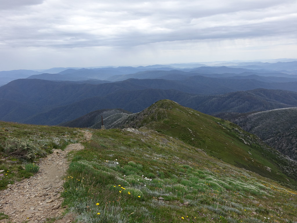 View down Spur, Mount Bogong