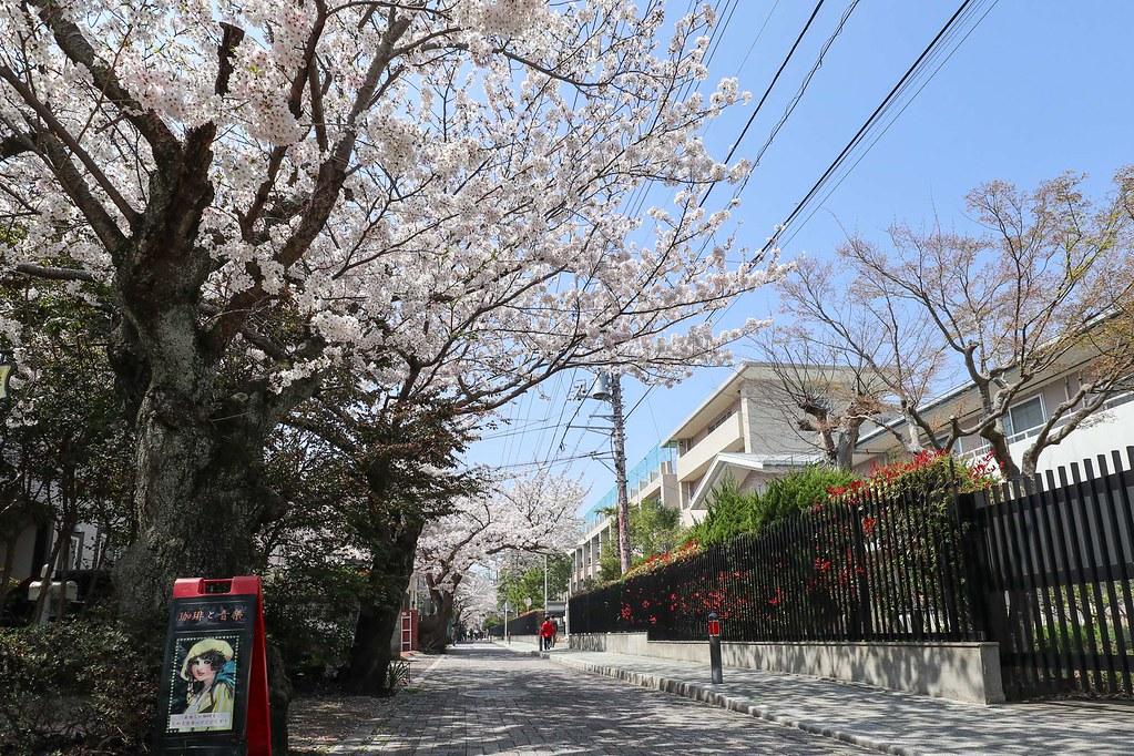 鎌倉の中古戸建 物件裏手の道はインターロッキング舗装になってて雰囲気あります