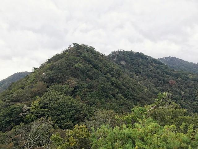 仙ヶ岳 南尾根からP3P2東峰