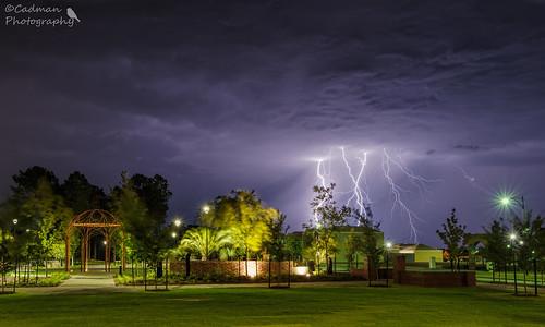 Lightning in the park