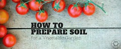 How to prepare Soil for a Vegetable Garden