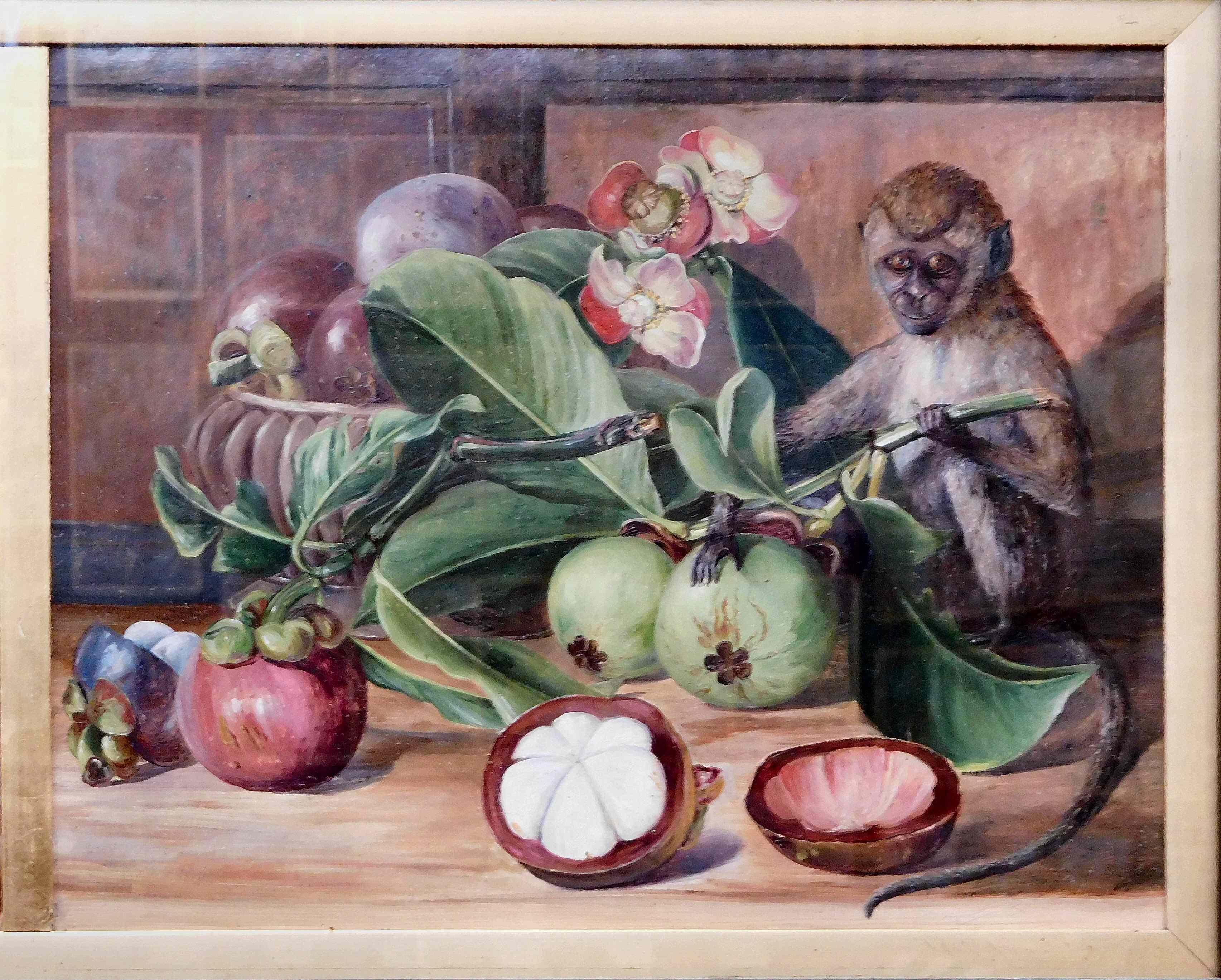 Flowers and fruit of the mangosteen, and Singapore monkey, by Marianne North, before 1890