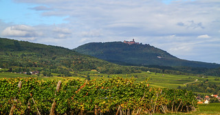 Alsace 2016