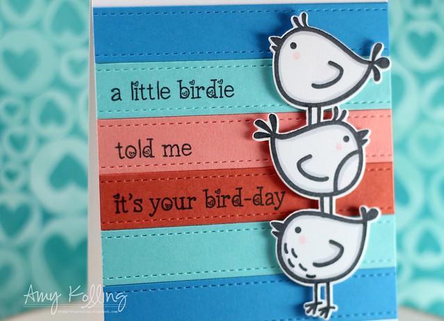 Bird-day2