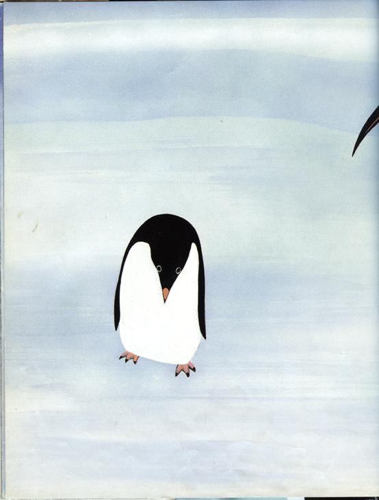 Antarctica29