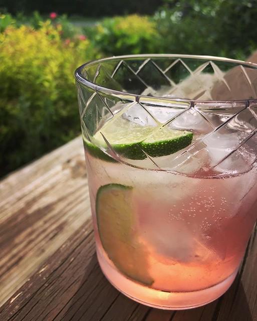 Rhubarb cocktail o'clock 🍸