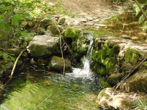 2018-05-12 - Rando à Maclas - Le Plateau de Bessey et le Batalon (19)