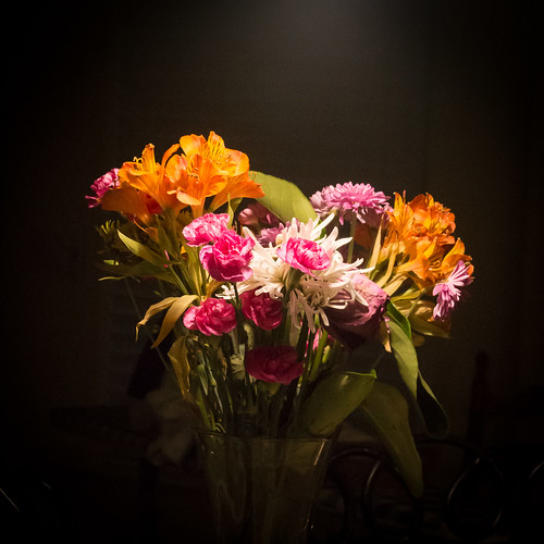 D22401E7 - Indoor Flowers At Night-2401