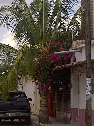 Teuchitlán-20180621-07587