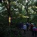 A walk through Coppetts Wood